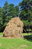 stock photo of haystack  - romania medieval haystack animal food traditional barn - JPG