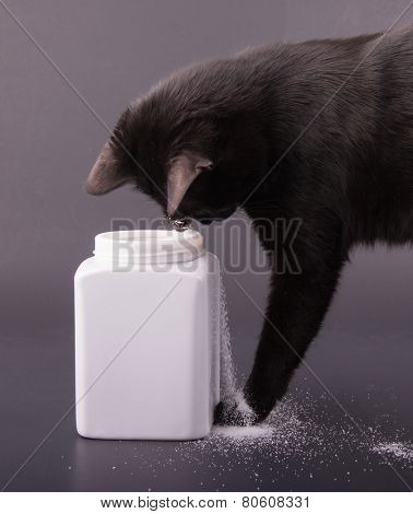 Comical image of a black cat spilling sugar out of a white jar, on dark gray background