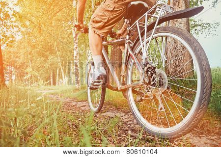 Man Riding On Bicycle In Summer Park