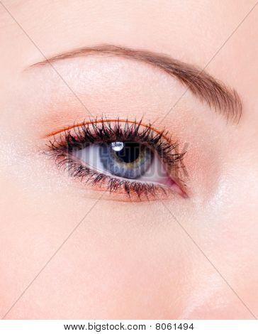 Fashion Makeup Of A Female Eye