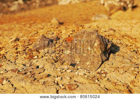 Desert Martian Landscape.