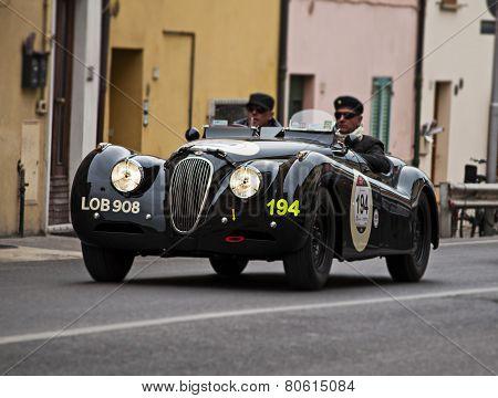 OLD CAR  Arnolt Bristol  mille miglia 2014