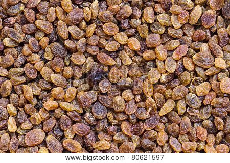 Golden-coloured raisin background