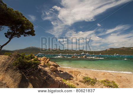 sardinia landscape beach capriccioli