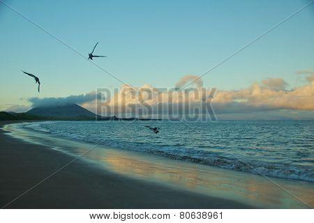 Espumilia Beach in Santiago Island