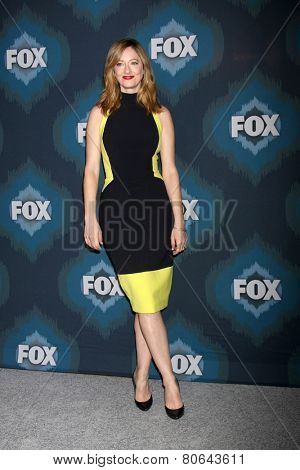 LOS ANGELES - JAN 17:  Judy Greer at the FOX TCA Winter 2015 at a The Langham Huntington Hotel on January 17, 2015 in Pasadena, CA