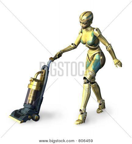 The Future of Housework