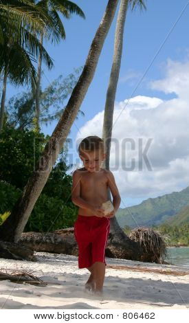 boy playing holding a shell on the beach