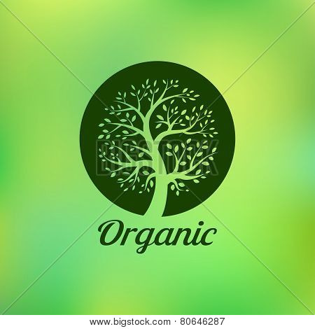 Organic green tree logo, eco emblem, ecology natural symbol