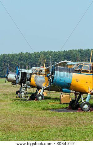 Planes At The Airfield