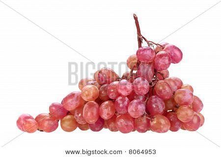 Single Bunch Of Pink Grape