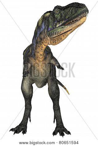 Dinosaur Aucasaurus