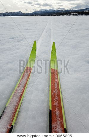 X-country Ski Winter Sport