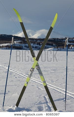 X-country Ski Winter Sport Concept