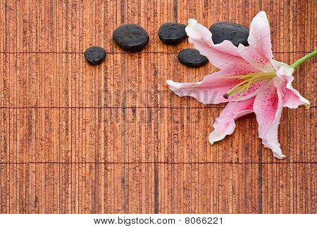 Spa Arrangement With Lily And Stones