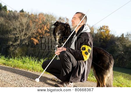 Guide Dog Is Attentive