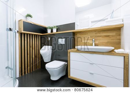Elegant Bathroom