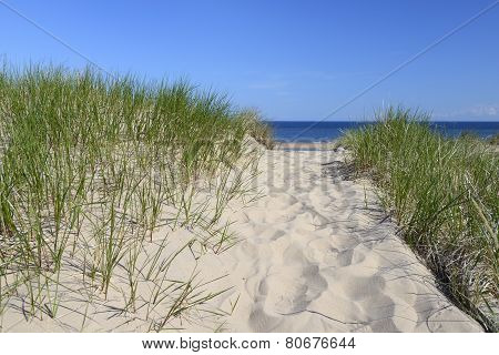 Pathway Over Dunes to Beach