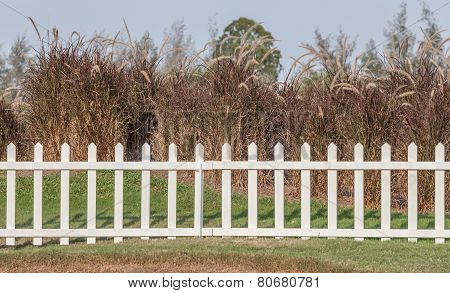 White Wooden Fence In Farmland Marks And Dry Trees Background.