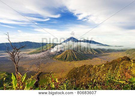 Mount Bromo  Batok Semeru Volcano