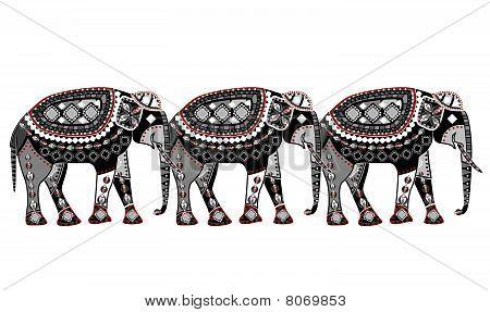 Elephant Pattern