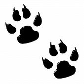 stock photo of paw-print  - 3d dog foot prints isolated in white - JPG