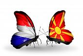 stock photo of macedonia  - Two butterflies with flags on wings as symbol of relations Holland and Macedonia - JPG
