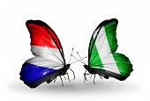 pic of holland flag  - Two butterflies with flags on wings as symbol of relations Holland and Nigeria - JPG