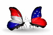 picture of holland flag  - Two butterflies with flags on wings as symbol of relations Holland and Samoa - JPG