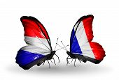 picture of holland flag  - Two butterflies with flags on wings as symbol of relations Holland and France - JPG
