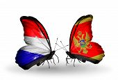 image of holland flag  - Two butterflies with flags on wings as symbol of relations Holland and Montenegro - JPG