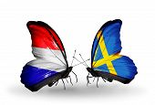 picture of holland flag  - Two butterflies with flags on wings as symbol of relations Holland and Sweden - JPG