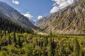 image of shan  - Scenic green valley in Ala Archa national park in Tian Shan mountain range in Kyrgyzstan - JPG