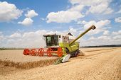 foto of combine  - Combine working on a wheat field - JPG
