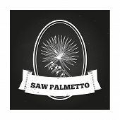 foto of saw-palmetto  - Health and Nature Collection - JPG