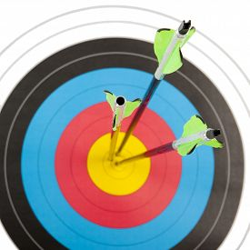picture of archery  - The bull - JPG