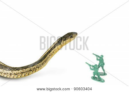 Army Men Attack Snake