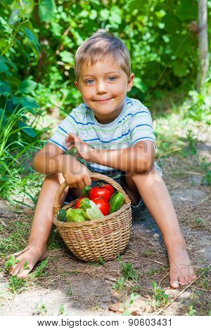 Boy with basket of vegetables