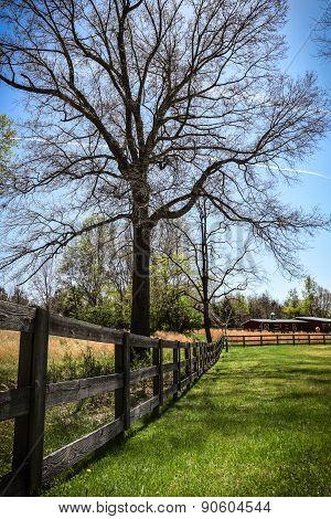 Three Board Fence
