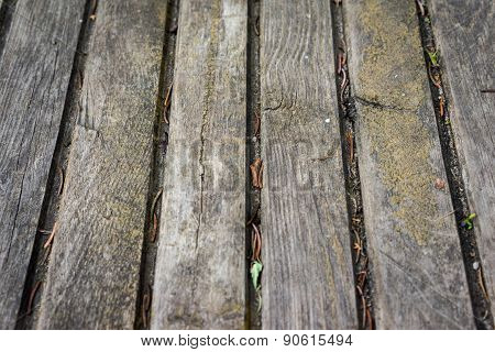 Texture Of Wooden Boards Floor