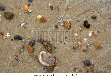 Wet Colorful Stones And Shell On Sand