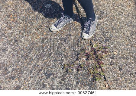 Woman Standing In Street By Flower