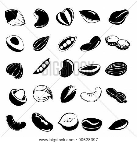 nut and seed icons