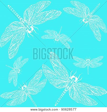 Pattern Dragonfly