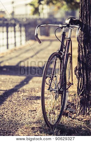 Bike Road Fixed Gear Bicycle