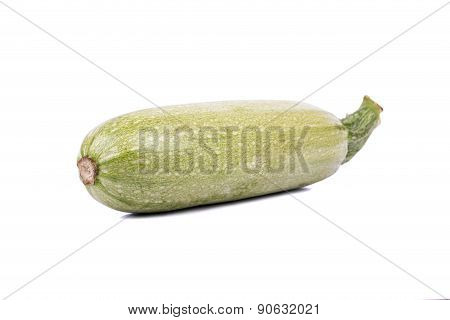 Vegetable Marrow