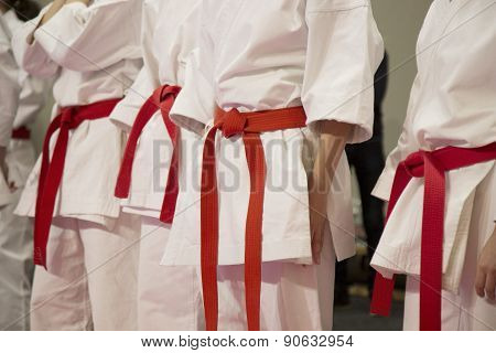 Karate Sportsmen With Red Belts