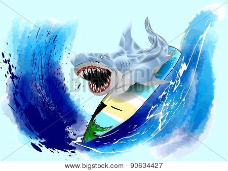 Surfing Shark
