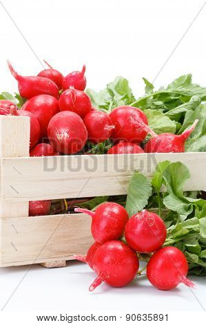 Macro Of Fresh Red Radish In Crate