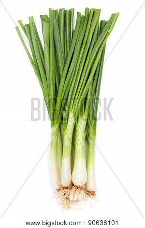 Bunch Of Green Onions On White